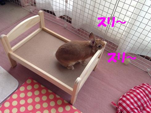 IMG_6018.ベッド