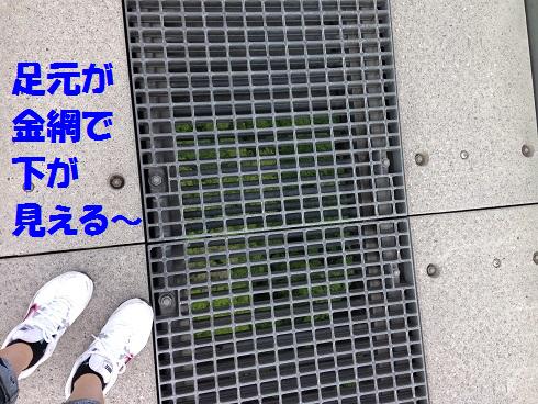 IMG_6322.大吊り橋