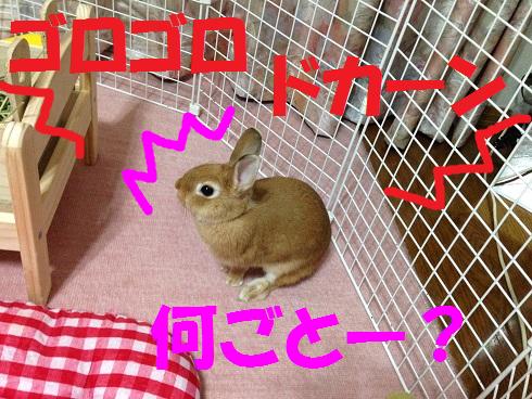 IMG_6500.かみなり