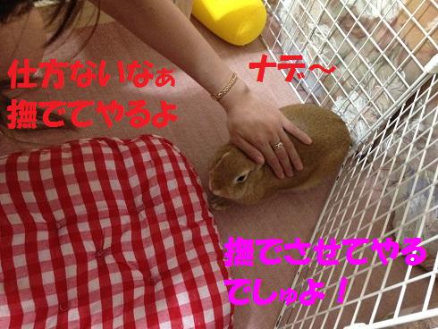 IMG_6949.ねーちゃん