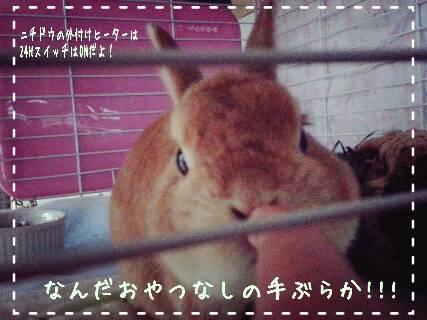 2014-09-04-14-51-38_deco_resize_20140904_231327.jpg