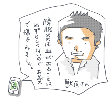 20140728_015.jpg