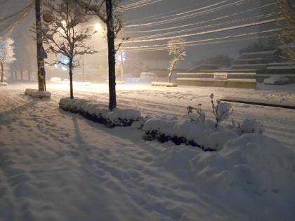 140214_雪