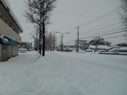 140215_雪