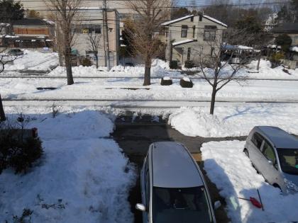 140217_雪