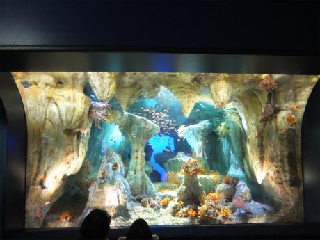サンシャイン水族館9