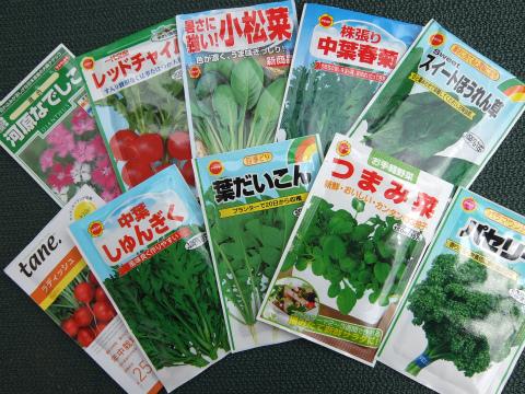 家庭菜園2014-1