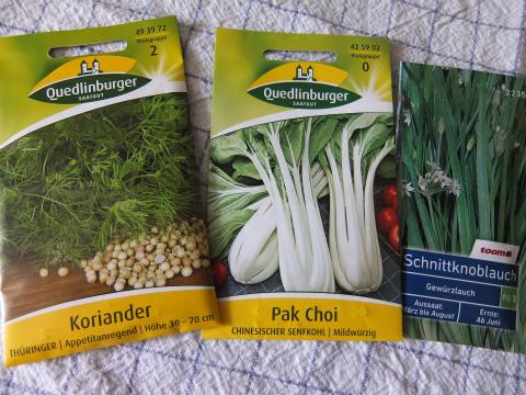 野菜の種1