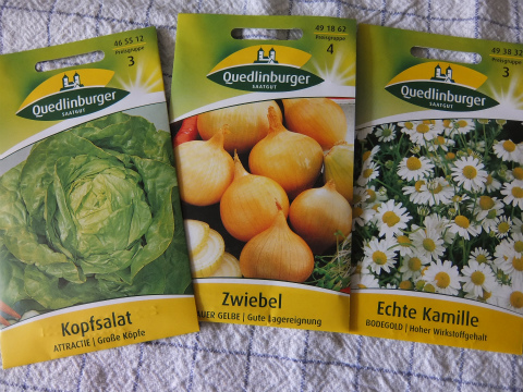 野菜の種2