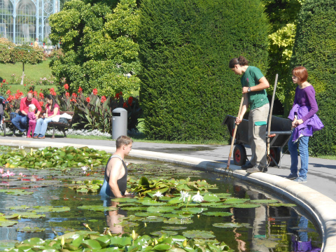 Wilhelmaの池の掃除3