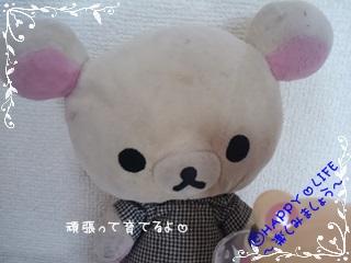 ちこちゃん日記★176★プチ栽培コリラックマversion-7