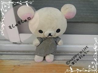 ちこちゃんのブラックベリー観察日記★3★みょ~ん-1