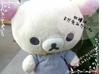 ちこちゃんのブラックベリー観察日記★8★収穫はいつかな?-6
