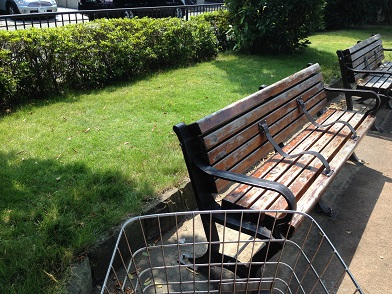 芝生とベンチ