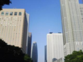 新宿中央公園噴水奥から駅方向T0010012