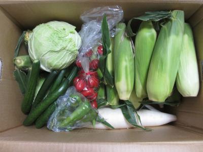 福島早稲沢の野菜