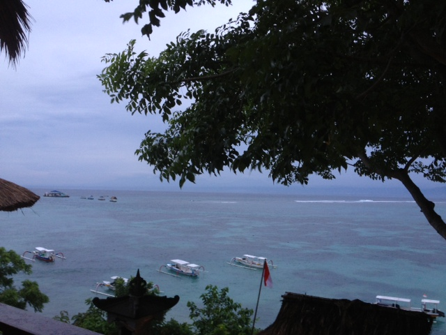 Bali105-14Feb14.jpg