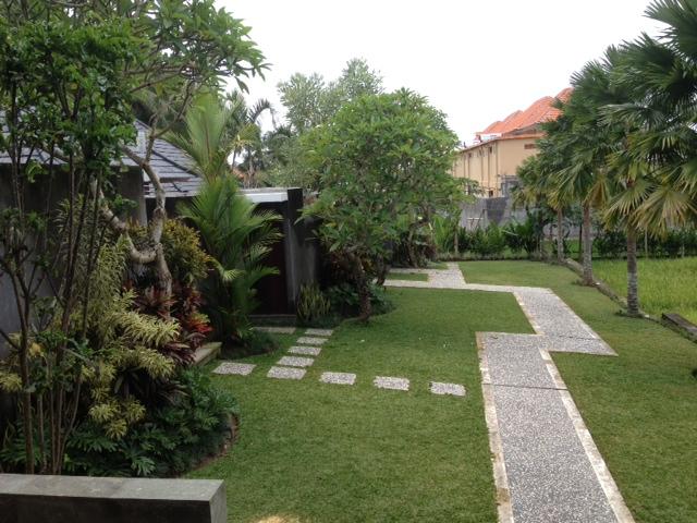 Bali20-09Feb14.jpg