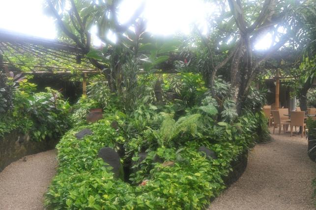 Bali5-08Feb14.jpg