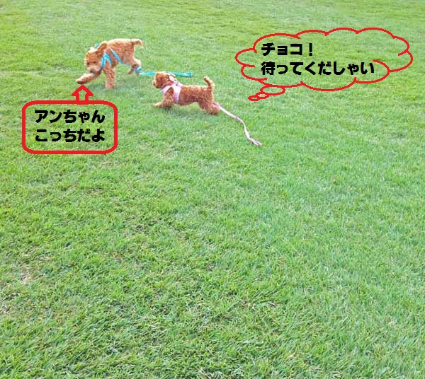 20140918114011c3c.jpg