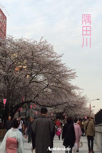 __-(21)隅田川