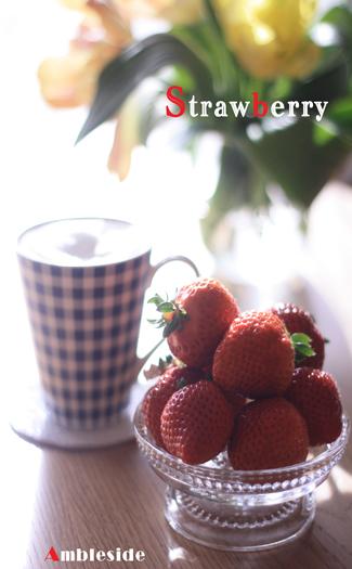 IMG_8889-Strawberry.jpg