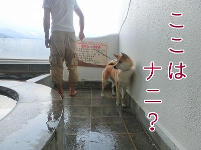 s-onsen140626-CIMG9831