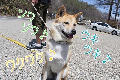 s-sainokawara140704-IMG_2451