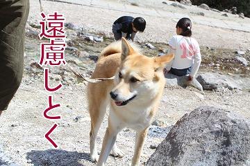 s-sainokawara140704-IMG_2396