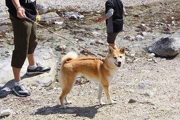 s-sainokawaraIMG_2392.jpg