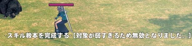 mabinogi_2014_06_01_004.jpg