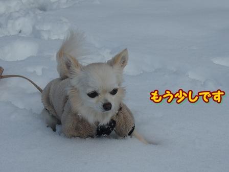 blog3413a.jpg