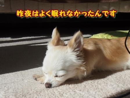 blog3436a.jpg