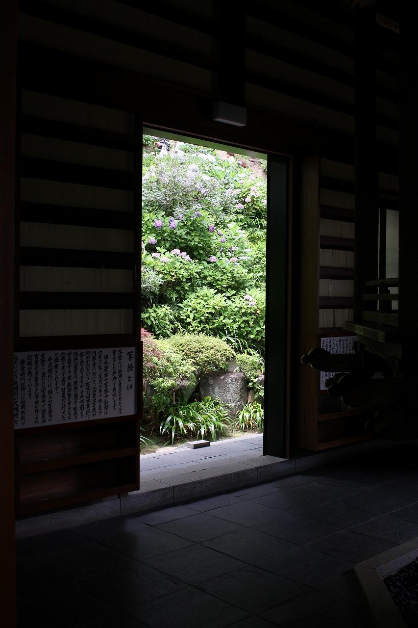shuku-IMG_6668.jpg