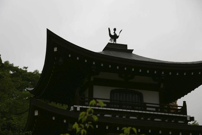 kansyuji1405_06_01.jpg