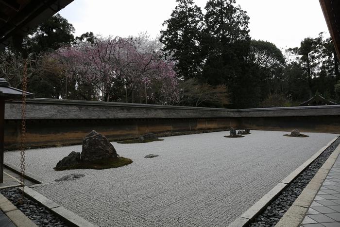 ryoanji1404_01.jpg