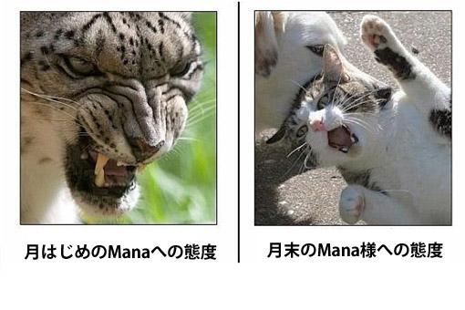 Yamadaの一ヶ月