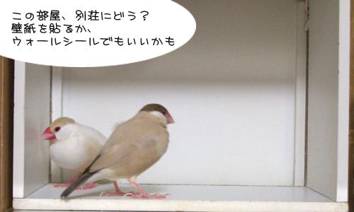 白い箱は別荘_1