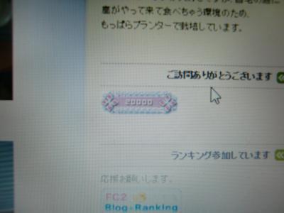 CIMG1799_convert_20140304195554.jpg