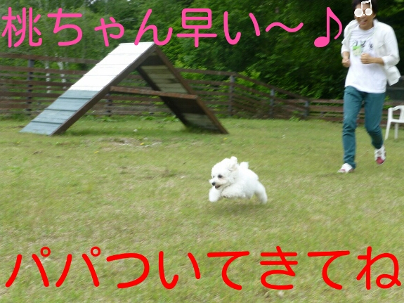 201403192209564e0.jpg