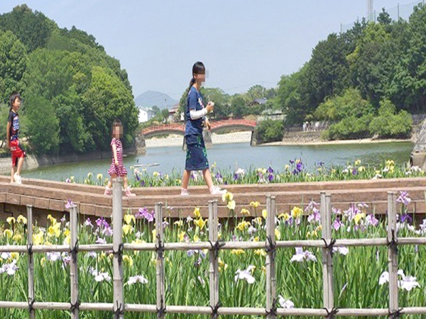 菖蒲園02