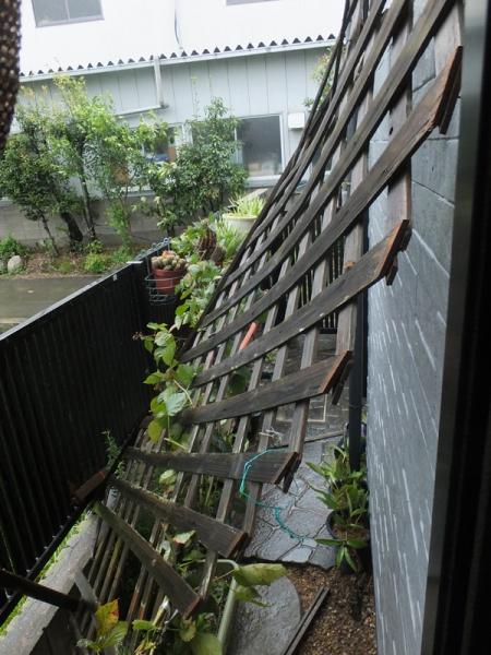我が家の台風被害