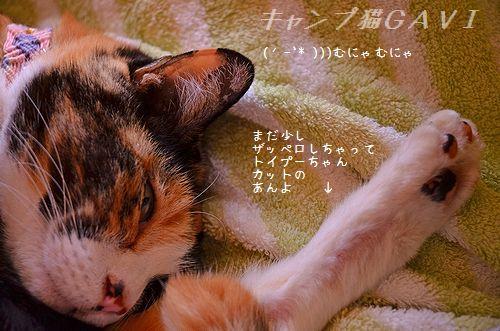 140410_3530a.jpg