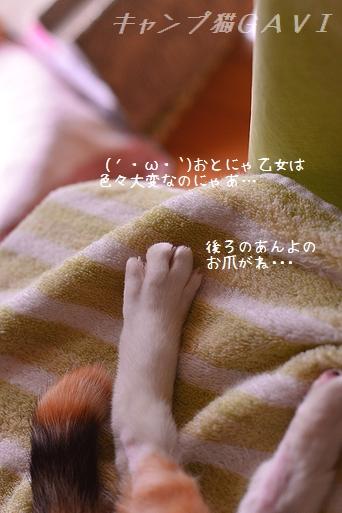 140612_3775.jpg