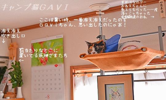 140821_5900.jpg