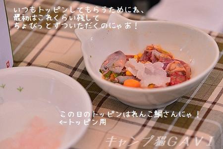 140913_6656.jpg