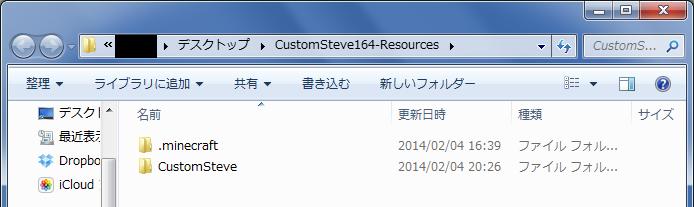 CustomSteve-3.png
