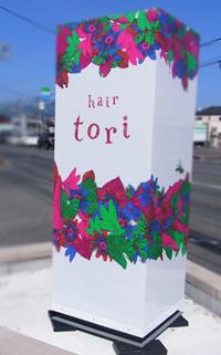 hairtori