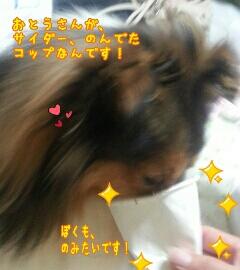 fc2_2014-07-19_22-01-14-513.jpg