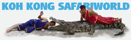safari-crocodile-guys.jpg